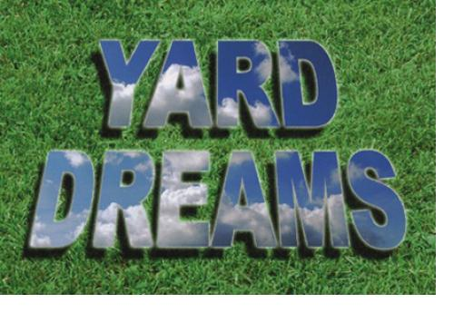 Yard Dreams  Toothbrush Art